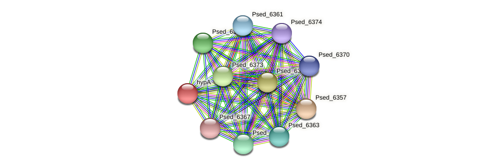 Psed_6358 protein (Pseudonocardia dioxanivorans) - STRING interaction network