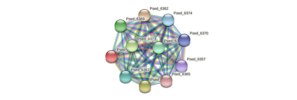 Psed_6361 protein (Pseudonocardia dioxanivorans) - STRING interaction network