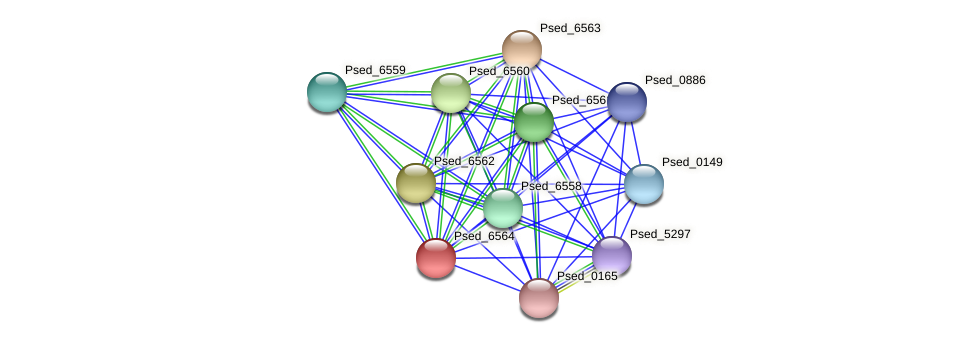 Psed_6564 protein (Pseudonocardia dioxanivorans) - STRING interaction network