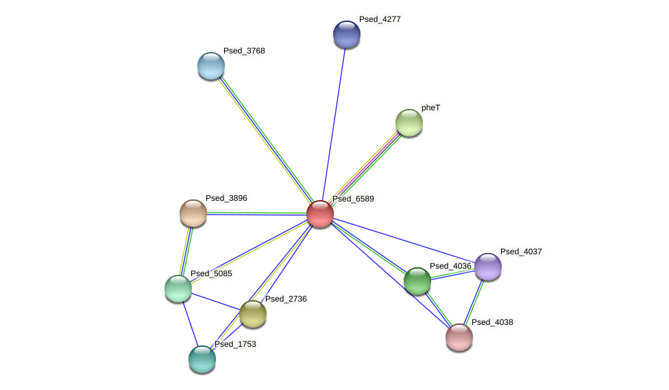 Psed_6589 protein (Pseudonocardia dioxanivorans) - STRING interaction network