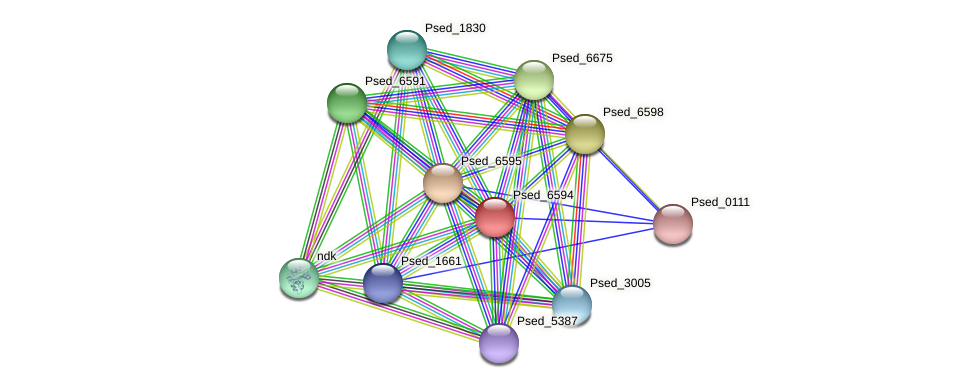 Psed_6594 protein (Pseudonocardia dioxanivorans) - STRING interaction network