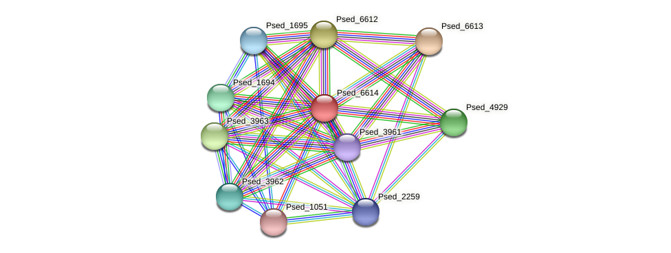 Psed_6614 protein (Pseudonocardia dioxanivorans) - STRING interaction network