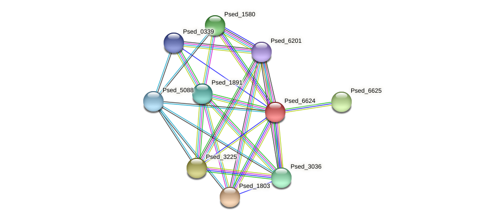 Psed_6624 protein (Pseudonocardia dioxanivorans) - STRING interaction network