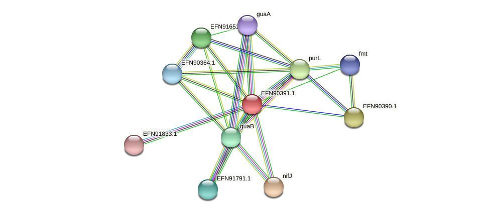 HMPREF9018_0020 protein (Prevotella amnii) - STRING interaction network