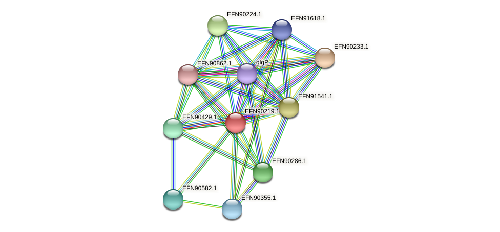 HMPREF9018_0060 protein (Prevotella amnii) - STRING interaction network