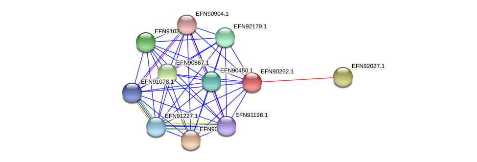 HMPREF9018_0081 protein (Prevotella amnii) - STRING interaction network