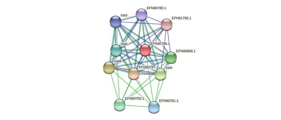 HMPREF9018_0128 protein (Prevotella amnii) - STRING interaction network