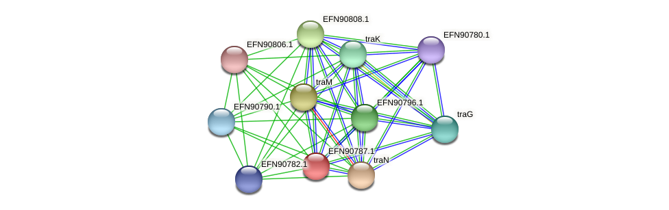 HMPREF9018_0132 protein (Prevotella amnii) - STRING interaction network