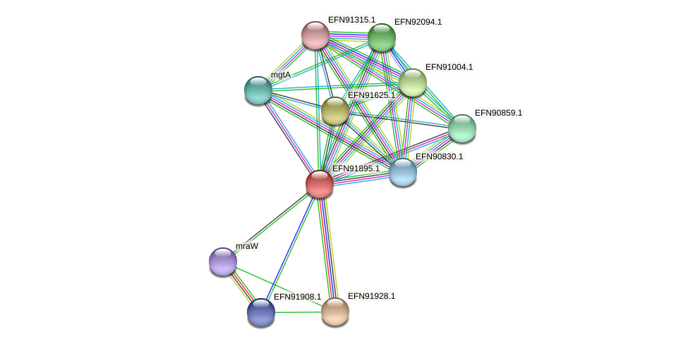 HMPREF9018_0159 protein (Prevotella amnii) - STRING interaction network