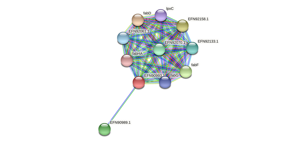 HMPREF9018_0243 protein (Prevotella amnii) - STRING interaction network