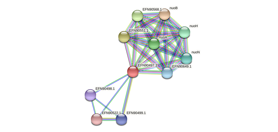 HMPREF9018_0380 protein (Prevotella amnii) - STRING interaction network