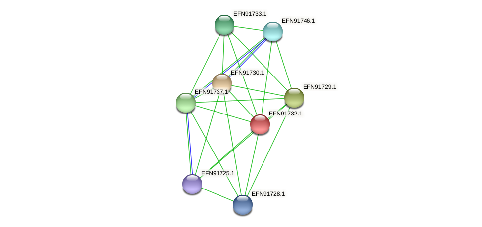 HMPREF9018_0427 protein (Prevotella amnii) - STRING interaction network