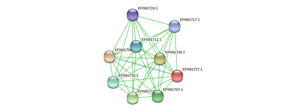 HMPREF9018_0440 protein (Prevotella amnii) - STRING interaction network