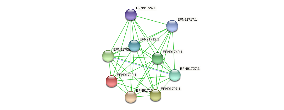 HMPREF9018_0445 protein (Prevotella amnii) - STRING interaction network