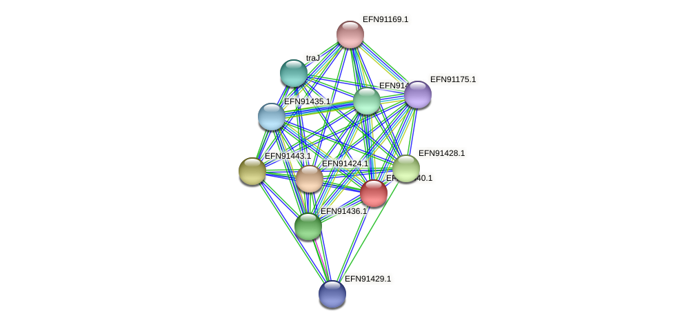 HMPREF9018_0461 protein (Prevotella amnii) - STRING interaction network