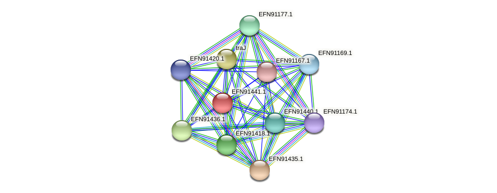 HMPREF9018_0468 protein (Prevotella amnii) - STRING interaction network