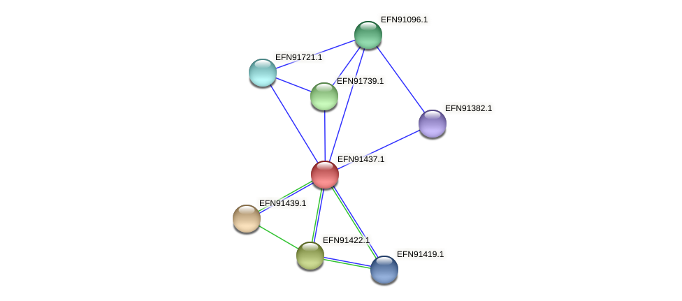 HMPREF9018_0483 protein (Prevotella amnii) - STRING interaction network