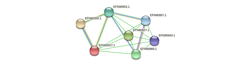HMPREF9018_0519 protein (Prevotella amnii) - STRING interaction network