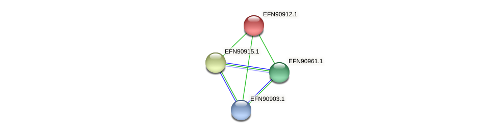 HMPREF9018_0546 protein (Prevotella amnii) - STRING interaction network