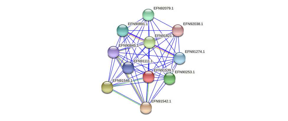 HMPREF9018_0575 protein (Prevotella amnii) - STRING interaction network