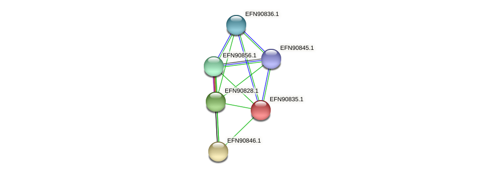 HMPREF9018_0689 protein (Prevotella amnii) - STRING interaction network