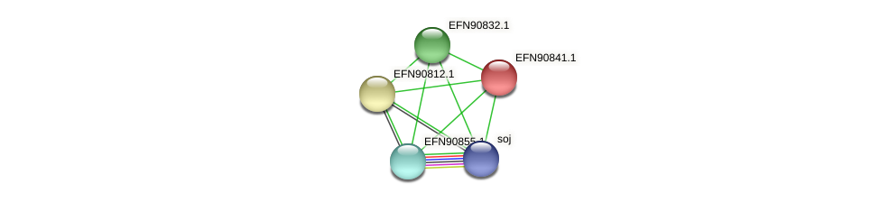HMPREF9018_0691 protein (Prevotella amnii) - STRING interaction network