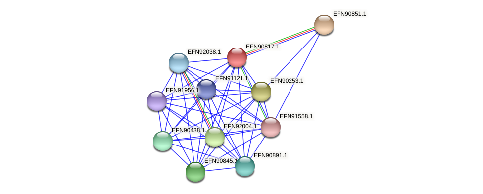 HMPREF9018_0704 protein (Prevotella amnii) - STRING interaction network