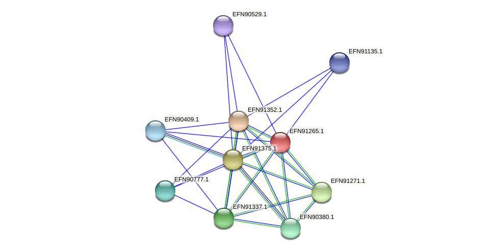 HMPREF9018_0739 protein (Prevotella amnii) - STRING interaction network