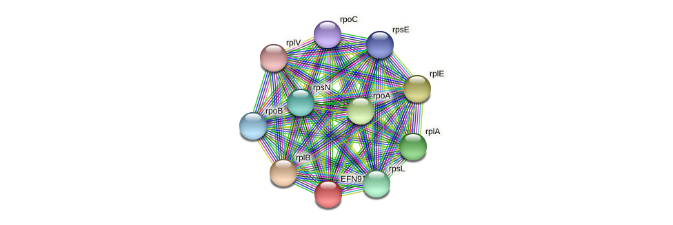 HMPREF9018_0815 protein (Prevotella amnii) - STRING interaction network
