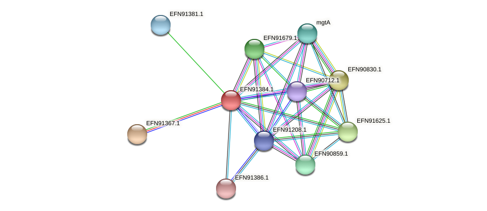 HMPREF9018_0826 protein (Prevotella amnii) - STRING interaction network