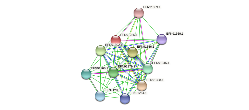 HMPREF9018_0835 protein (Prevotella amnii) - STRING interaction network
