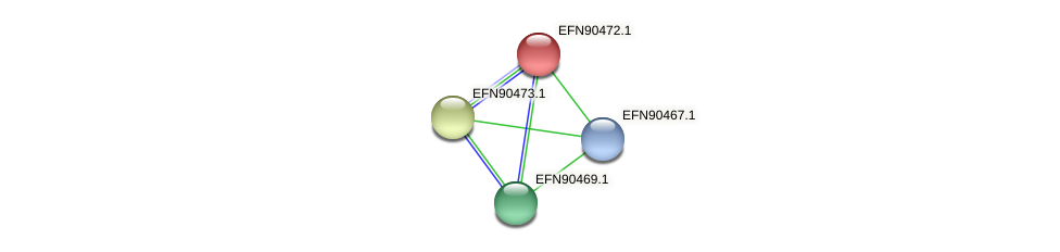 HMPREF9018_0861 protein (Prevotella amnii) - STRING interaction network