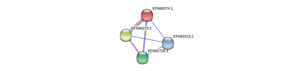 HMPREF9018_0867 protein (Prevotella amnii) - STRING interaction network