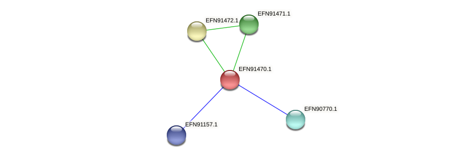 HMPREF9018_0870 protein (Prevotella amnii) - STRING interaction network
