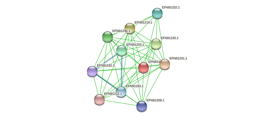 HMPREF9018_0935 protein (Prevotella amnii) - STRING interaction network