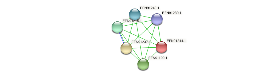 HMPREF9018_0956 protein (Prevotella amnii) - STRING interaction network