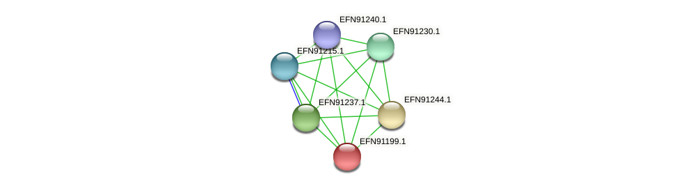 HMPREF9018_0957 protein (Prevotella amnii) - STRING interaction network