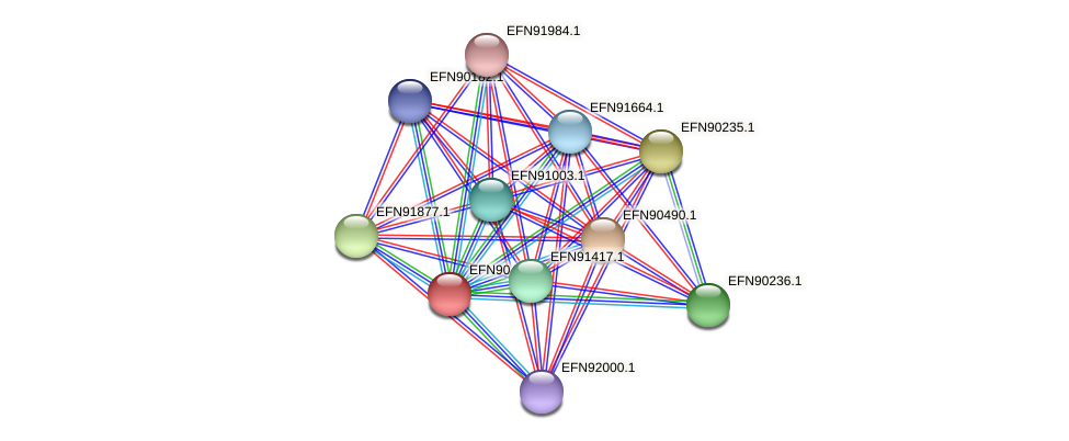 HMPREF9018_0964 protein (Prevotella amnii) - STRING interaction network