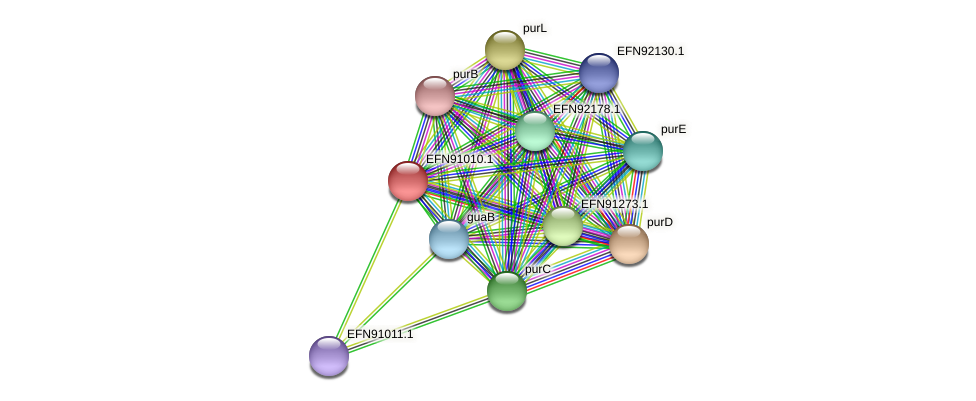 HMPREF9018_0993 protein (Prevotella amnii) - STRING interaction network