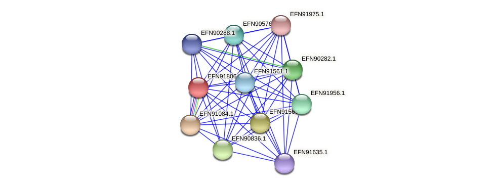 HMPREF9018_1018 protein (Prevotella amnii) - STRING interaction network