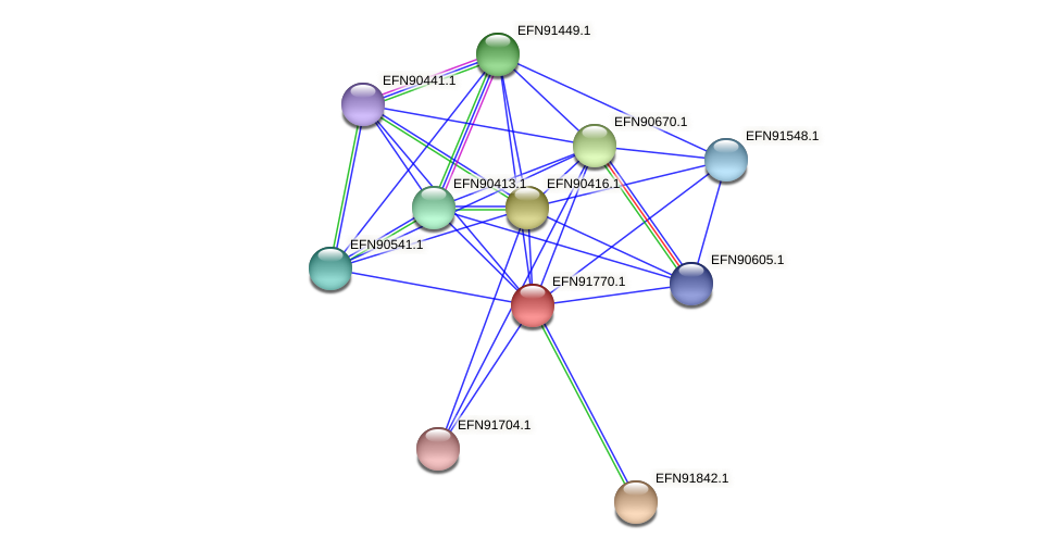 HMPREF9018_1031 protein (Prevotella amnii) - STRING interaction network
