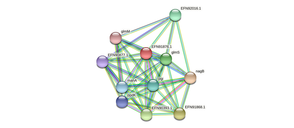 HMPREF9018_1086 protein (Prevotella amnii) - STRING interaction network
