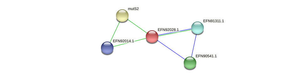 HMPREF9018_1172 protein (Prevotella amnii) - STRING interaction network