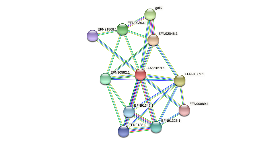 HMPREF9018_1190 protein (Prevotella amnii) - STRING interaction network