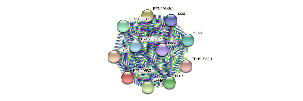 HMPREF9018_1234 protein (Prevotella amnii) - STRING interaction network