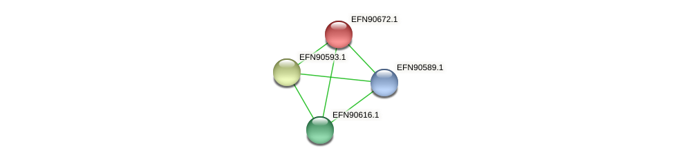 HMPREF9018_1274 protein (Prevotella amnii) - STRING interaction network