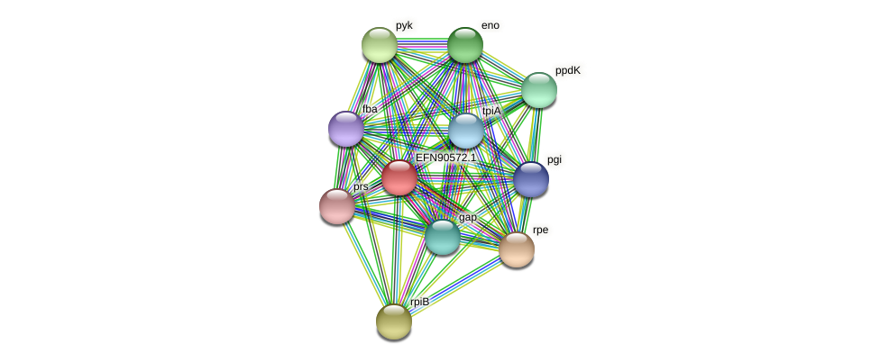 HMPREF9018_1277 protein (Prevotella amnii) - STRING interaction network