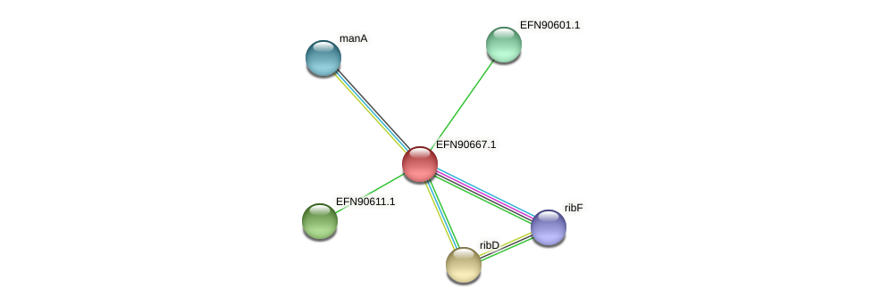 HMPREF9018_1290 protein (Prevotella amnii) - STRING interaction network