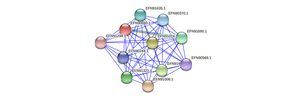 HMPREF9018_1359 protein (Prevotella amnii) - STRING interaction network