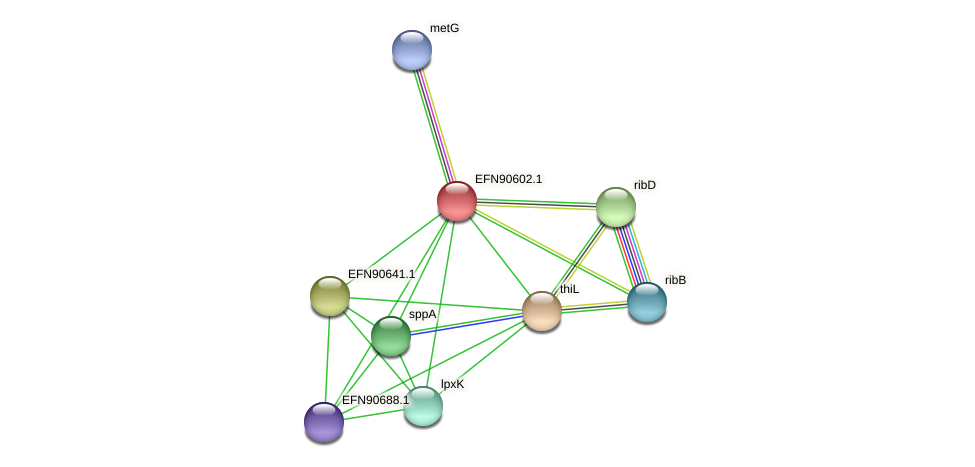 HMPREF9018_1379 protein (Prevotella amnii) - STRING interaction network